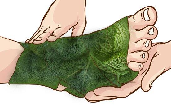 капустный лист на ногу