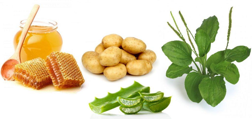 мед. картофель. алоэ и подорожник